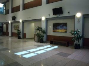"""Almost, Ocotillo"" at Riverside County Admin Building"