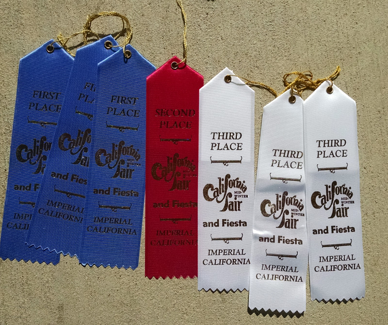 Art award ribbons